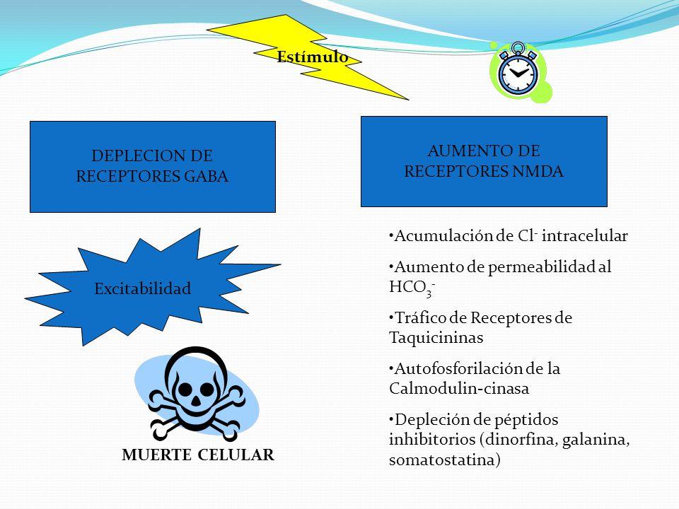 Estímulo AUMENTO DE. RECEPTORES NMDA. DEPLECION DE. RECEPTORES GABA. Acumulación de Cl- intracelular.