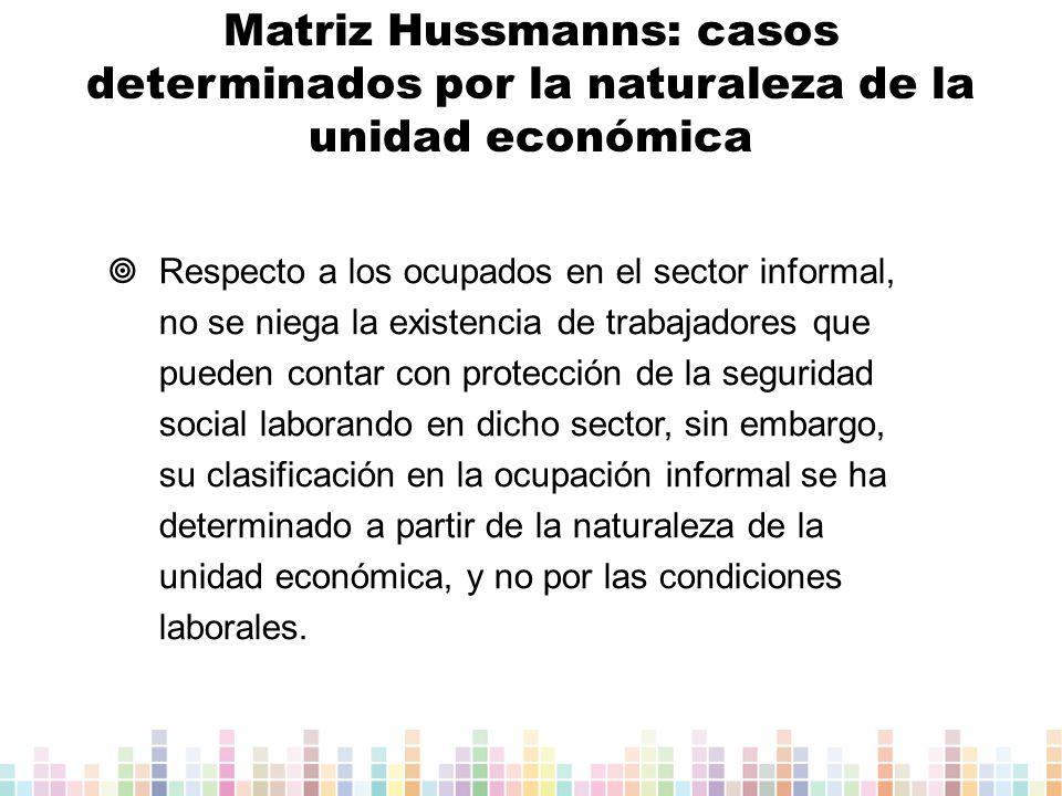 Matriz Hussmanns: casos determinados por la naturaleza de la unidad económica