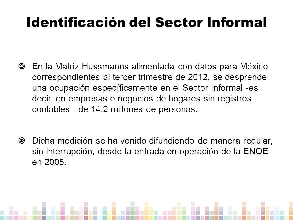 Identificación del Sector Informal