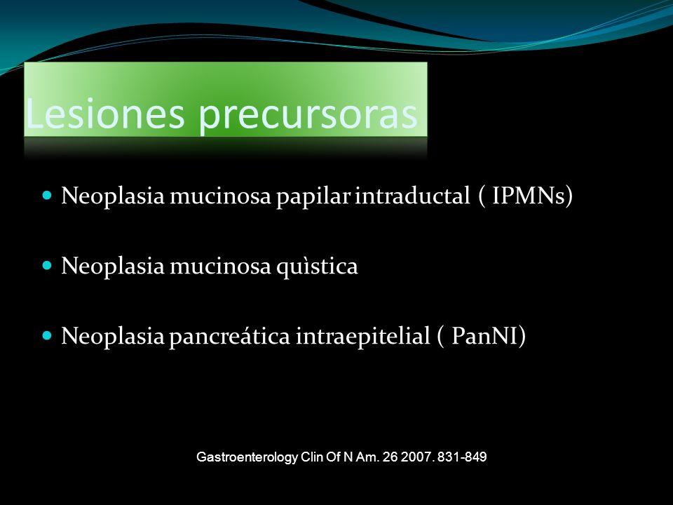 Lesiones precursoras Neoplasia mucinosa papilar intraductal ( IPMNs)