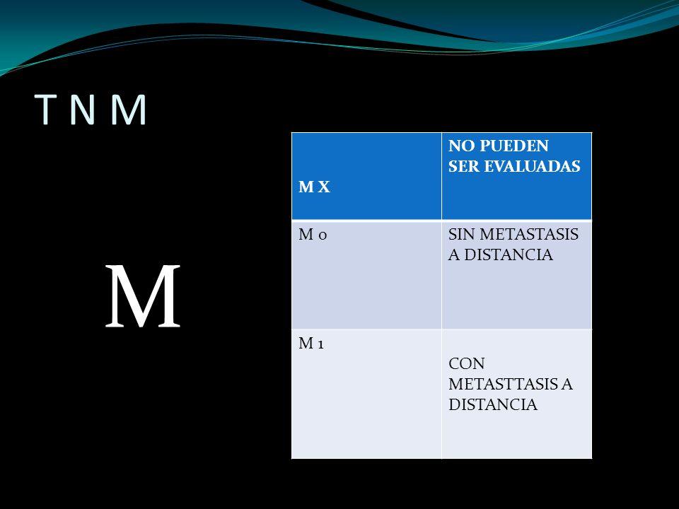 M T N M M X NO PUEDEN SER EVALUADAS M 0 SIN METASTASIS A DISTANCIA M 1