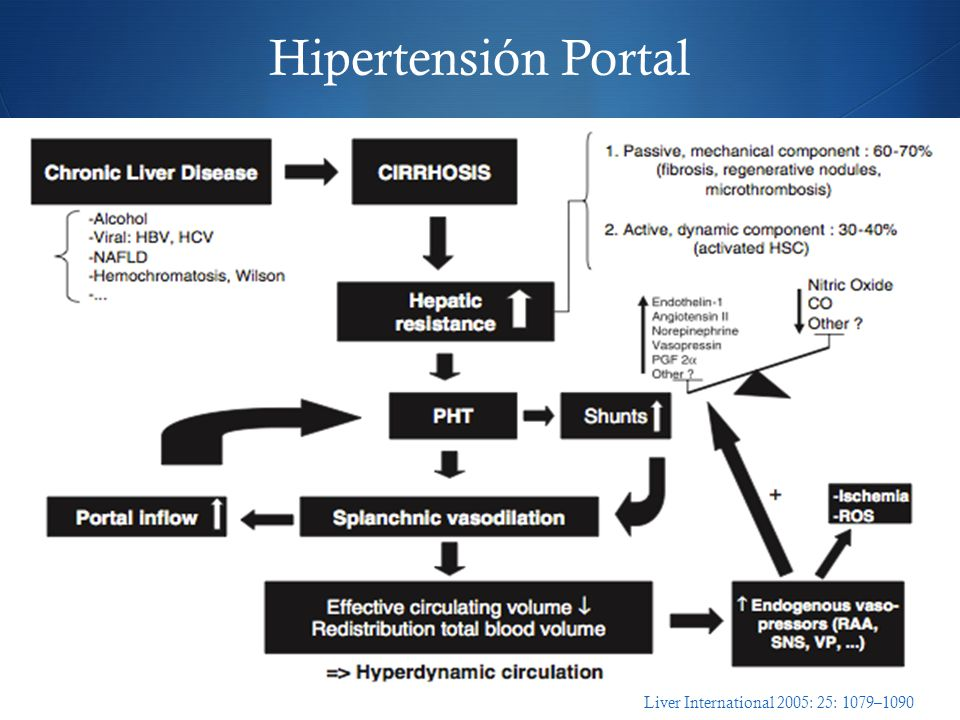 Hipertensión Portal Liver International 2005: 25: 1079–1090