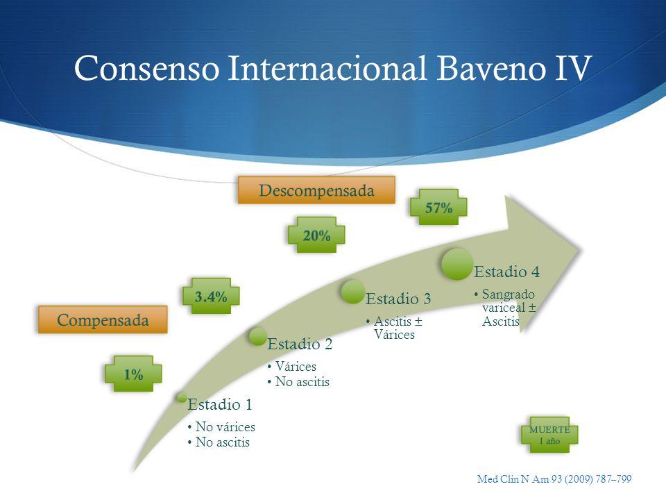 Consenso Internacional Baveno IV