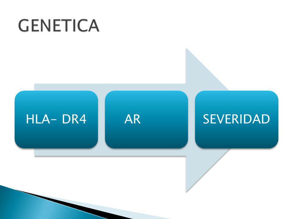 GENETICA HLA- DR4 AR SEVERIDAD