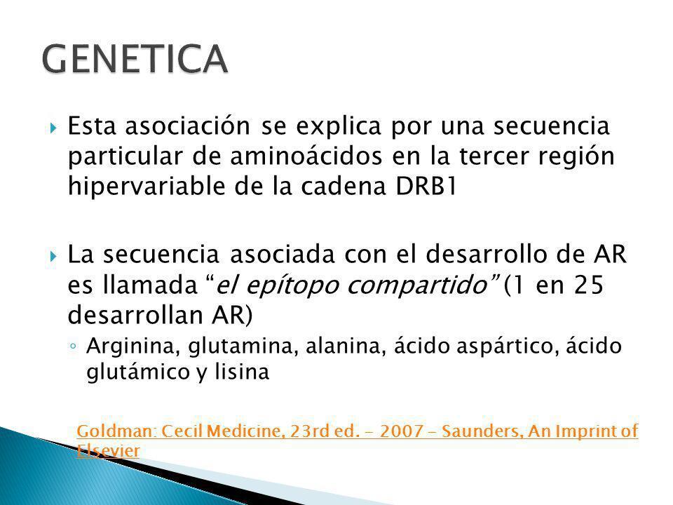 GENETICA Esta asociación se explica por una secuencia particular de aminoácidos en la tercer región hipervariable de la cadena DRB1.