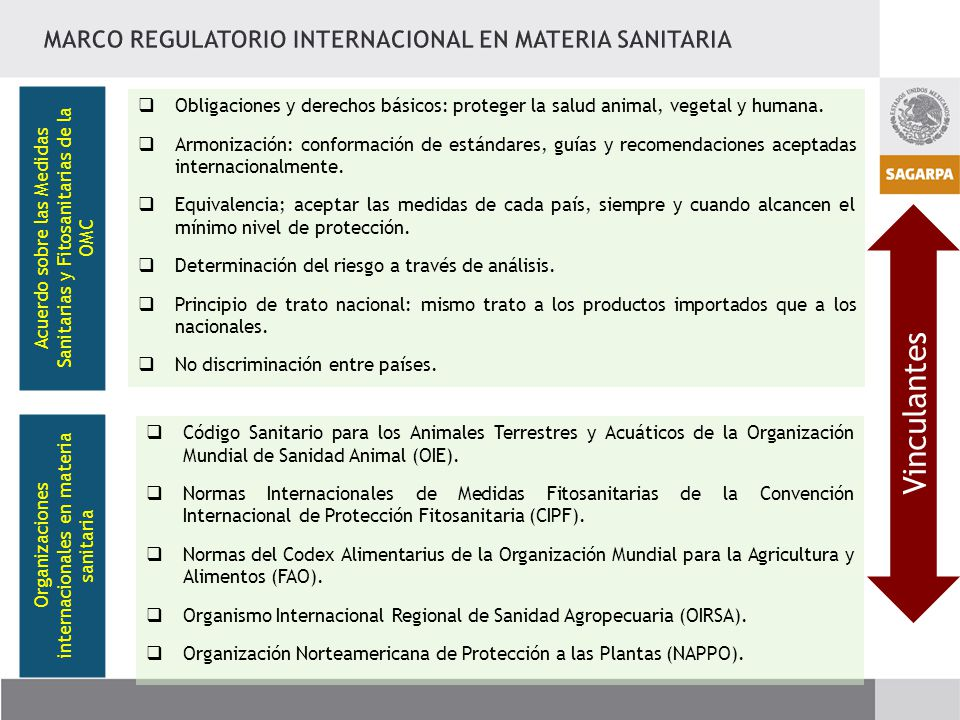 Vinculantes MARCO REGULATORIO INTERNACIONAL EN MATERIA SANITARIA