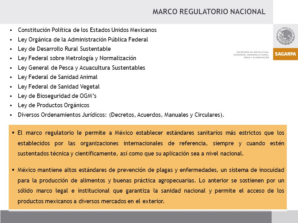 MARCO REGULATORIO NACIONAL