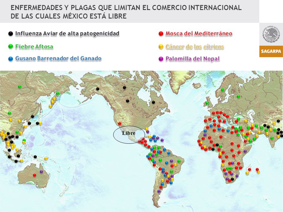 ENFERMEDADES Y PLAGAS QUE LIMITAN EL COMERCIO INTERNACIONAL DE LAS CUALES MÉXICO ESTÁ LIBRE