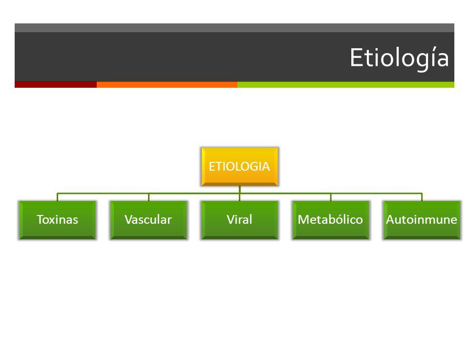 Etiología ETIOLOGIA Toxinas Vascular Viral Metabólico Autoinmune
