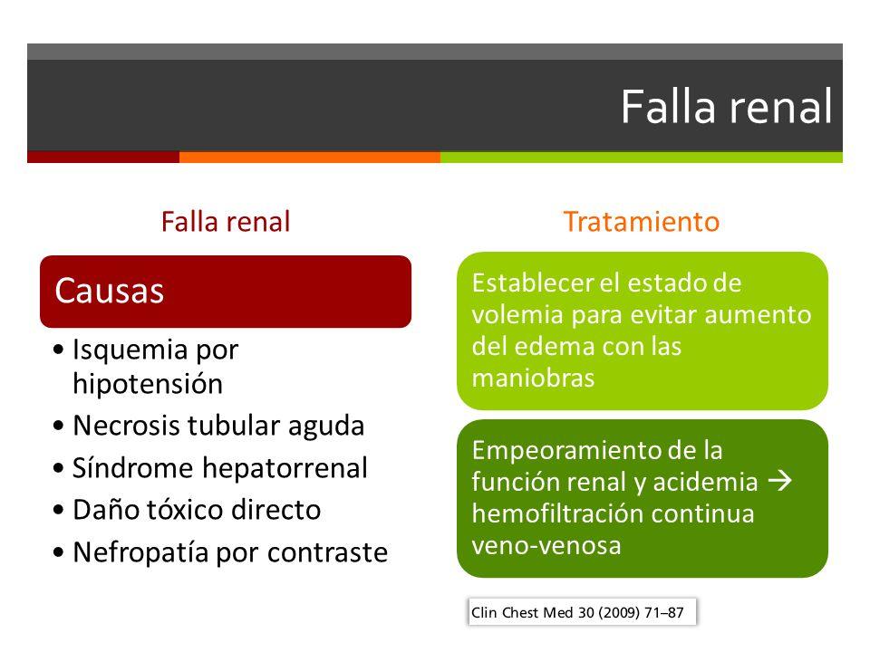 Falla renal Causas Falla renal Tratamiento Isquemia por hipotensión