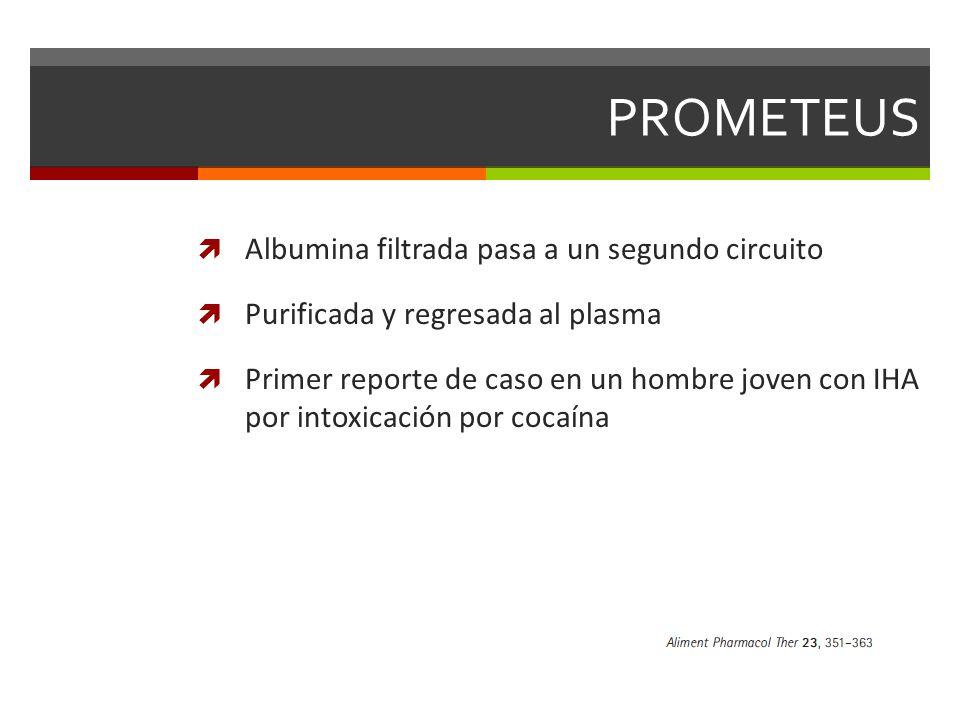 PROMETEUS Albumina filtrada pasa a un segundo circuito