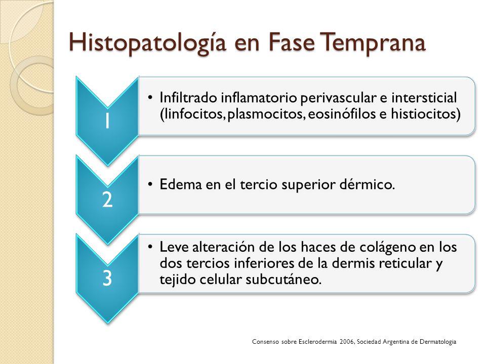 Histopatología en Fase Temprana