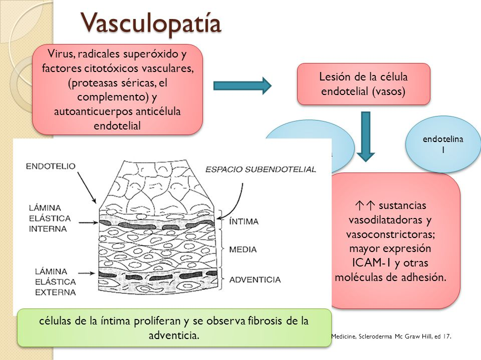 Lesión de la célula endotelial (vasos)