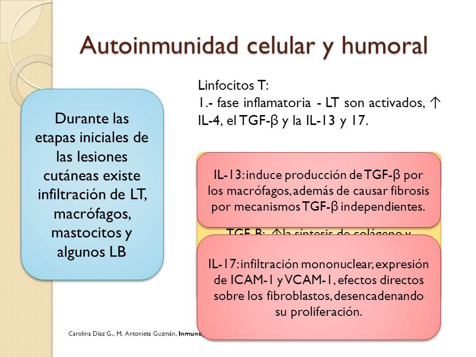 Autoinmunidad celular y humoral