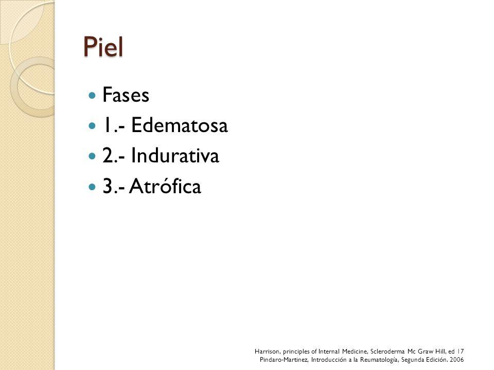 Piel Fases 1.- Edematosa 2.- Indurativa 3.- Atrófica