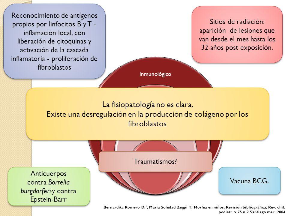 La fisiopatología no es clara.
