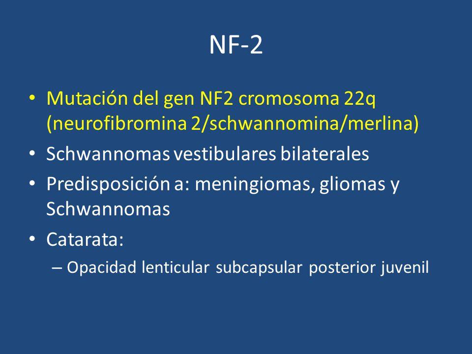 NF-2 Mutación del gen NF2 cromosoma 22q (neurofibromina 2/schwannomina/merlina) Schwannomas vestibulares bilaterales.