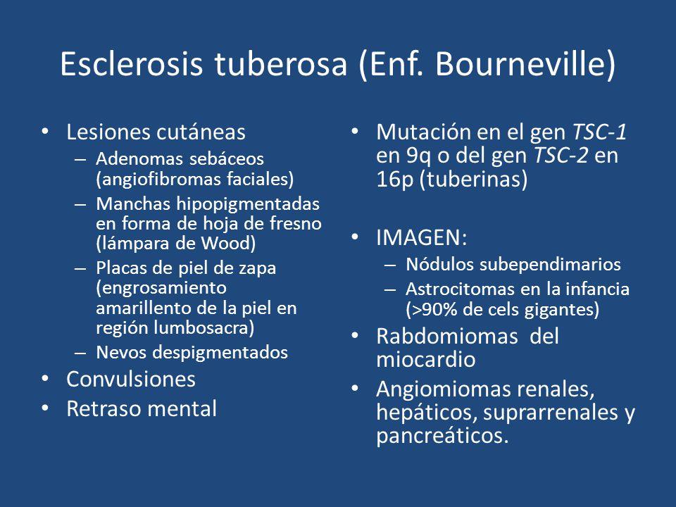 Esclerosis tuberosa (Enf. Bourneville)