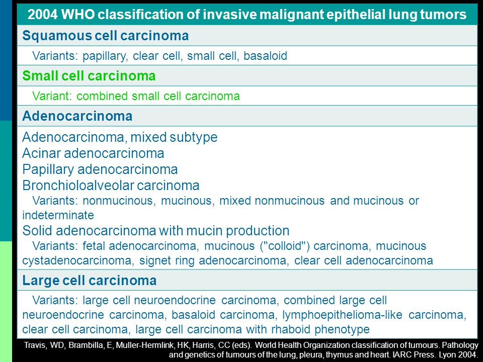 2004 WHO classification of invasive malignant epithelial lung tumors
