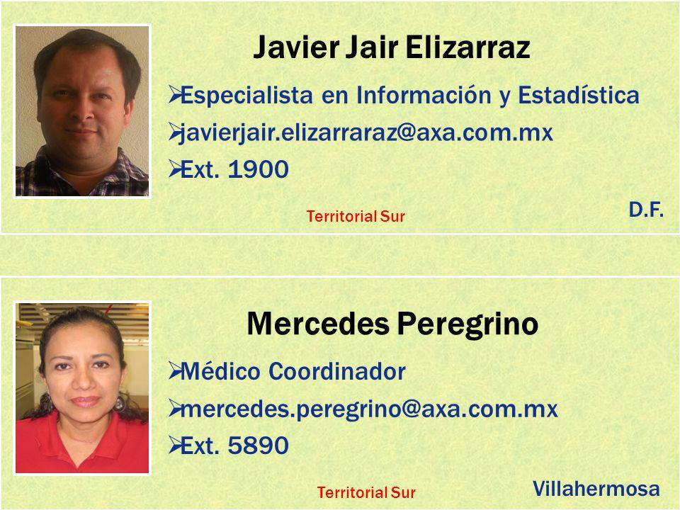 Javier Jair Elizarraz Mercedes Peregrino