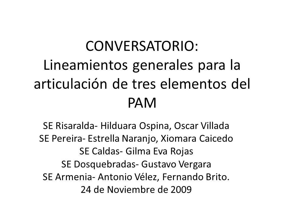 CONVERSATORIO: Lineamientos generales para la articulación de tres elementos del PAM