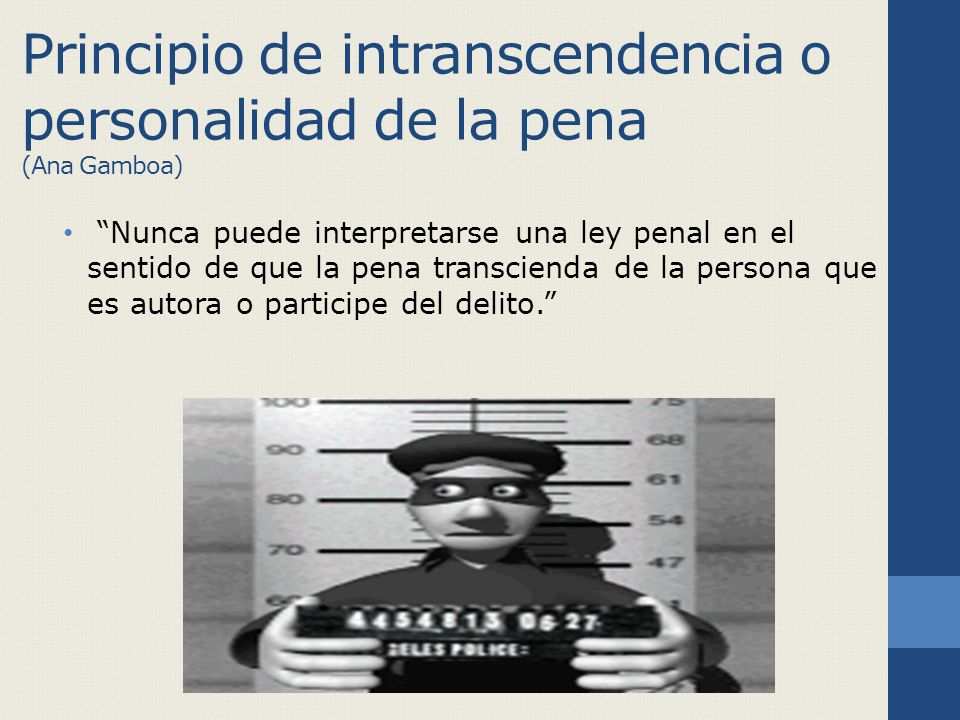 Principio de intranscendencia o personalidad de la pena (Ana Gamboa)