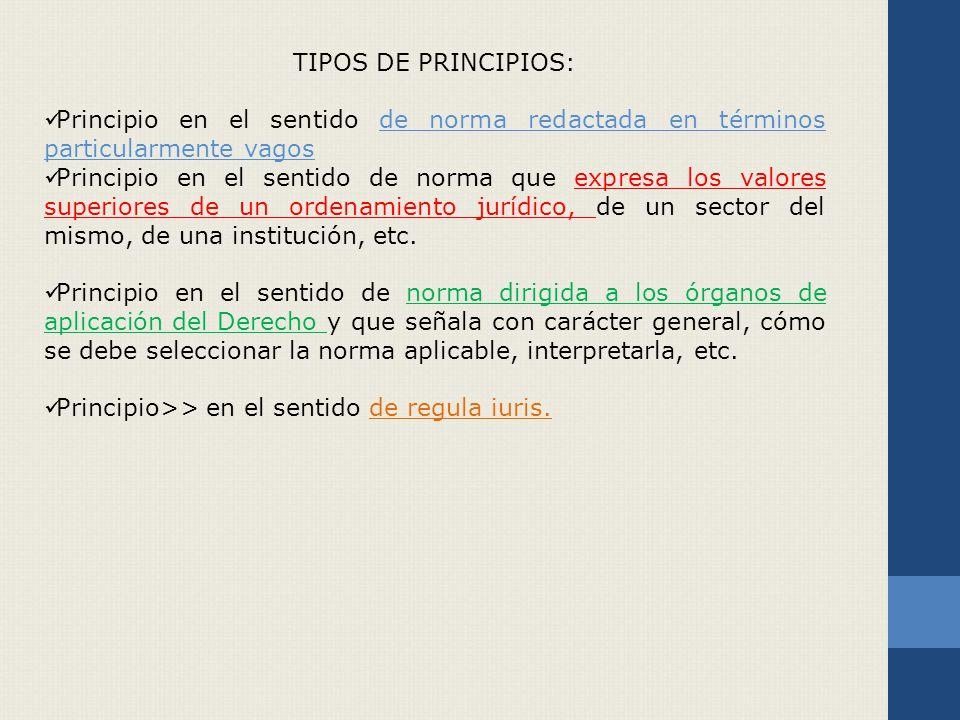 TIPOS DE PRINCIPIOS: Principio en el sentido de norma redactada en términos particularmente vagos.