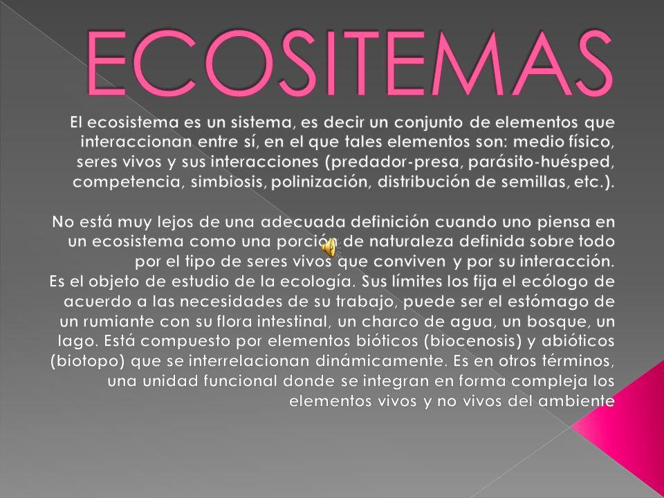 ECOSITEMAS