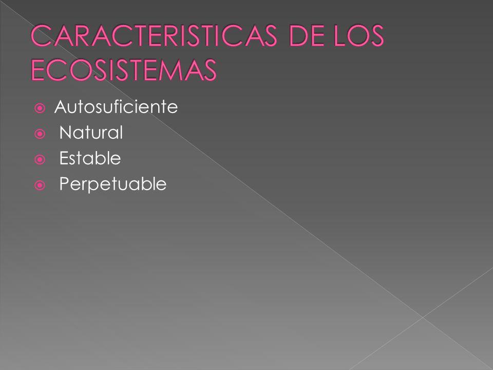CARACTERISTICAS DE LOS ECOSISTEMAS