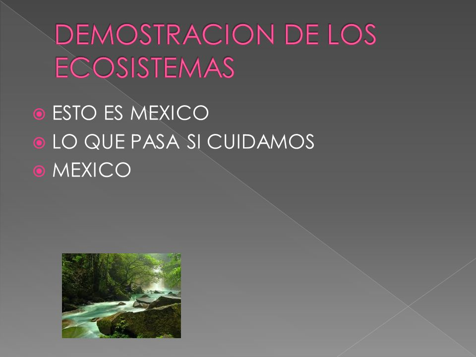 DEMOSTRACION DE LOS ECOSISTEMAS