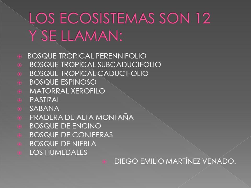 LOS ECOSISTEMAS SON 12 Y SE LLAMAN: