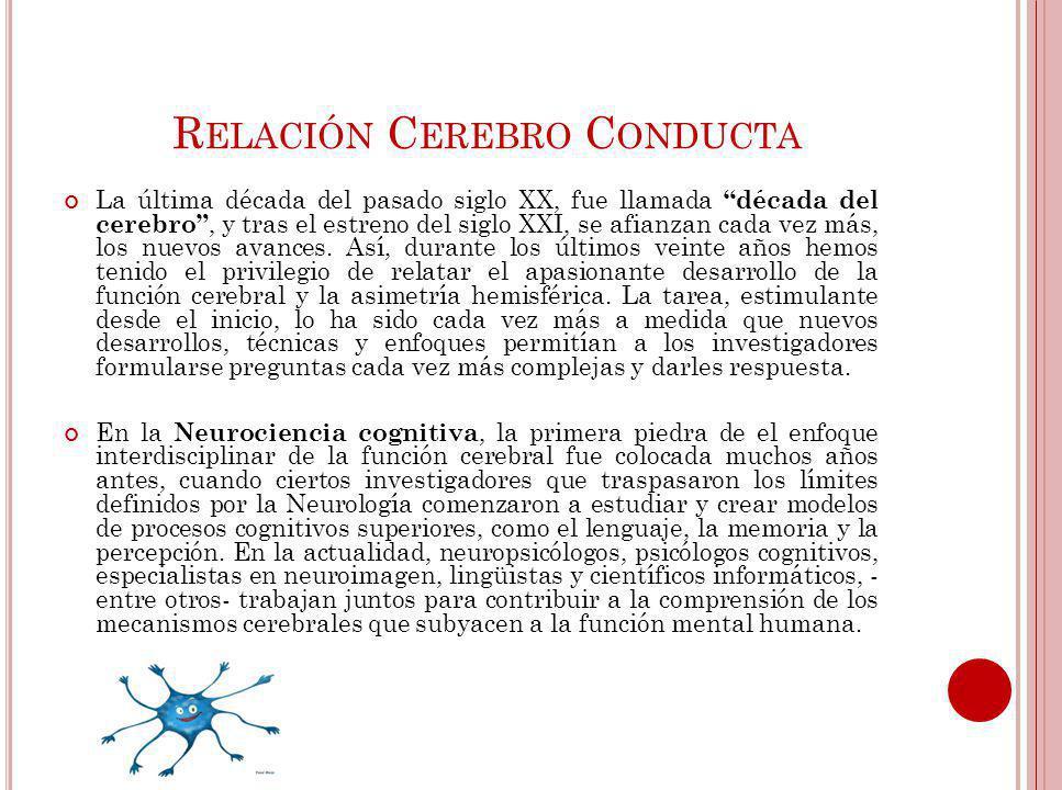 Relación Cerebro Conducta