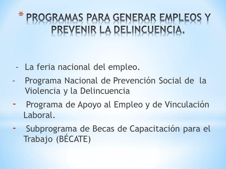 PROGRAMAS PARA GENERAR EMPLEOS Y PREVENIR LA DELINCUENCIA.