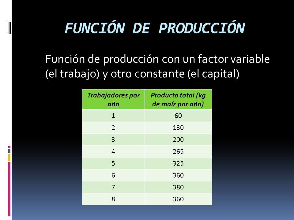 Producto total (kg de maíz por año)