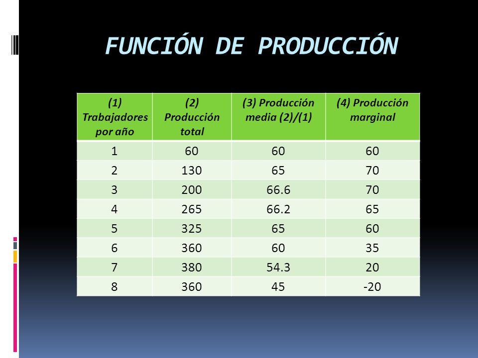 FUNCIÓN DE PRODUCCIÓN (1) Trabajadores por año. (2) Producción total. (3) Producción media (2)/(1)