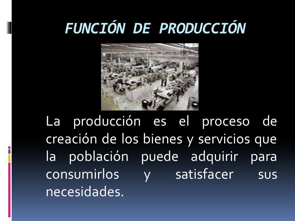 FUNCIÓN DE PRODUCCIÓN