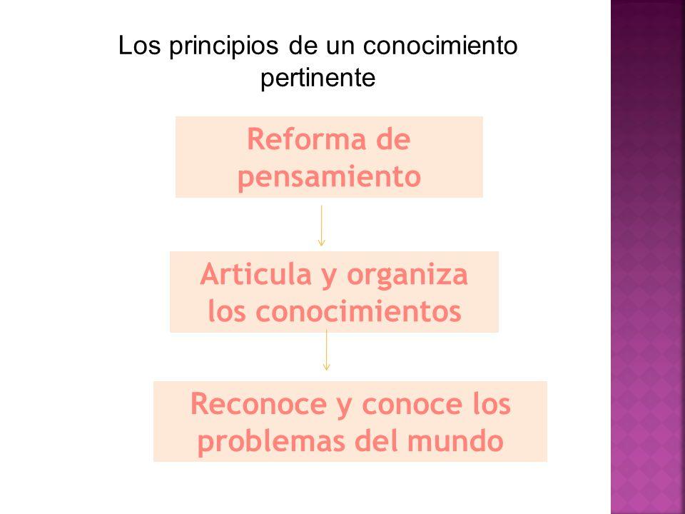 Reforma de pensamiento