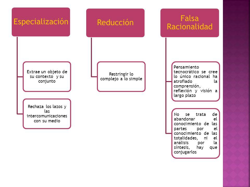 Falsa Racionalidad Especialización Reducción