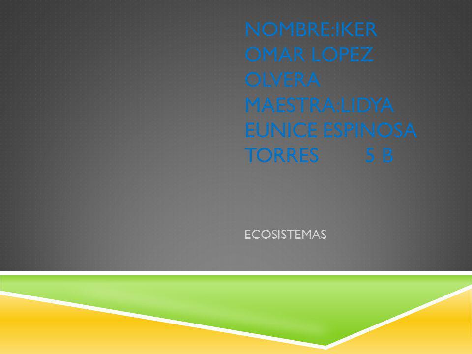 NOMBRE:IKER OMaR LOPEZ OLVERA MAESTRA:LIDYA EUNICE ESPINOSA TORRES 5 b