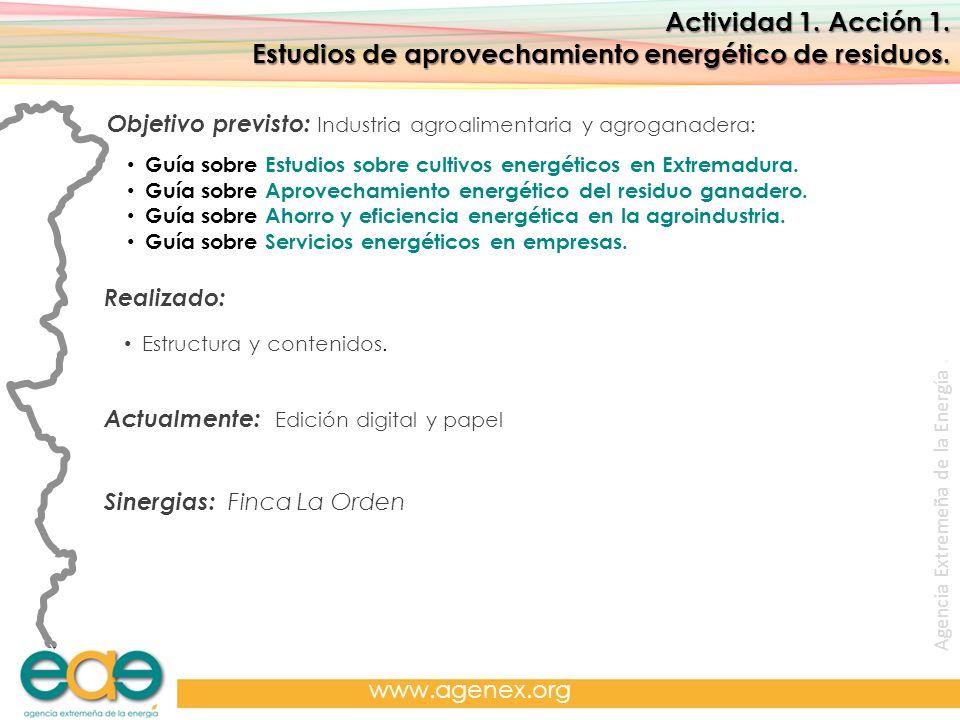 Estudios de aprovechamiento energético de residuos.