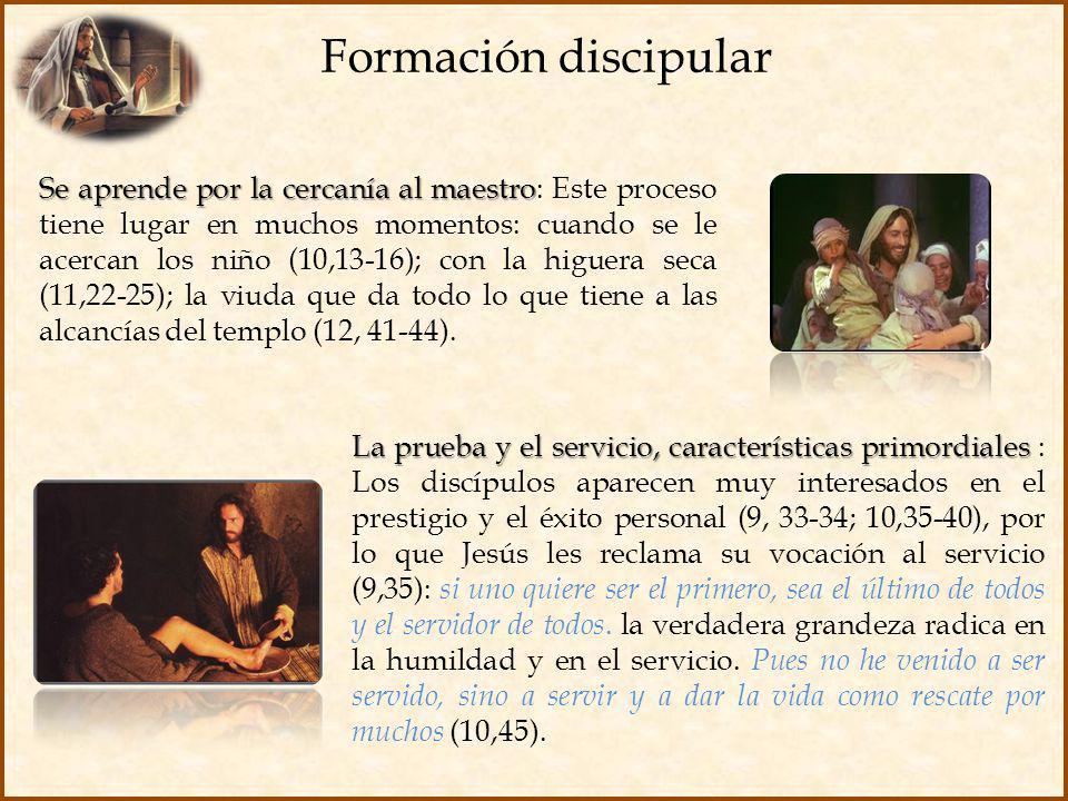 Formación discipular