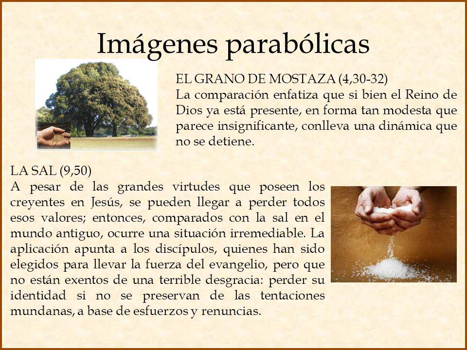 Imágenes parabólicas EL GRANO DE MOSTAZA (4,30-32)