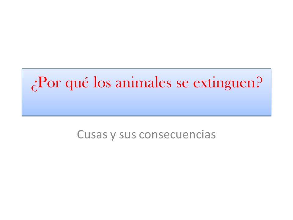 ¿Por qué los animales se extinguen