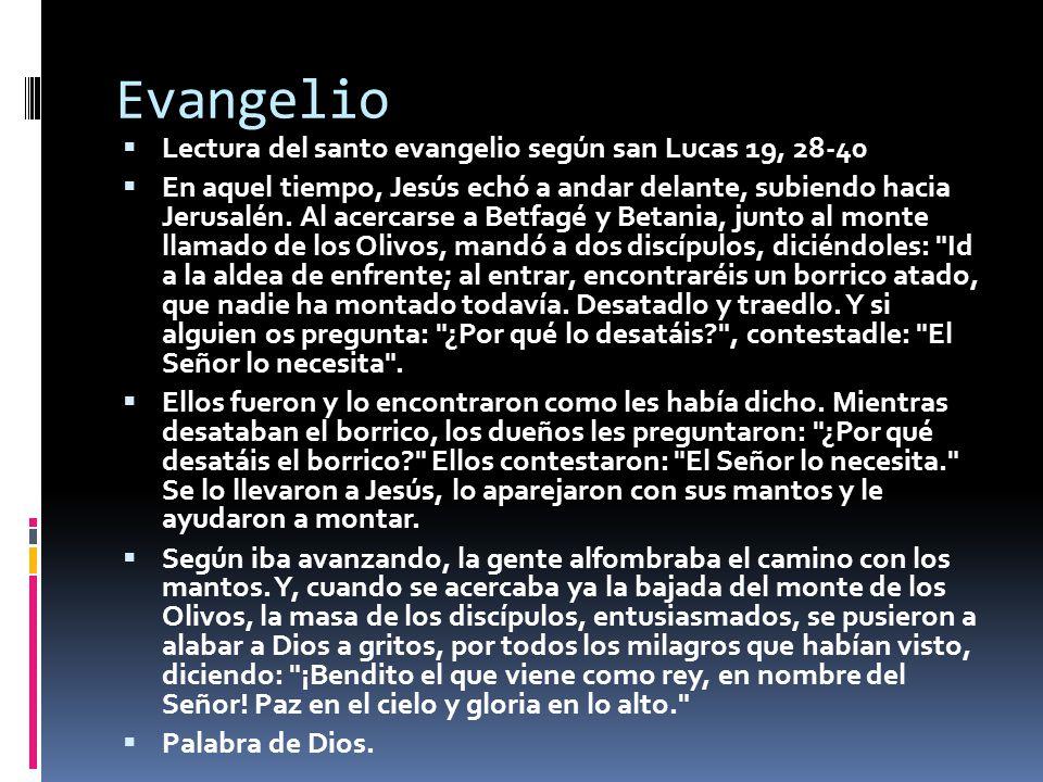 Evangelio Lectura del santo evangelio según san Lucas 19, 28-40