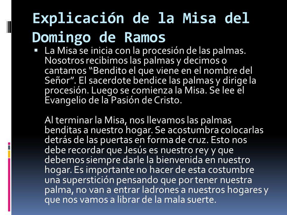 Explicación de la Misa del Domingo de Ramos