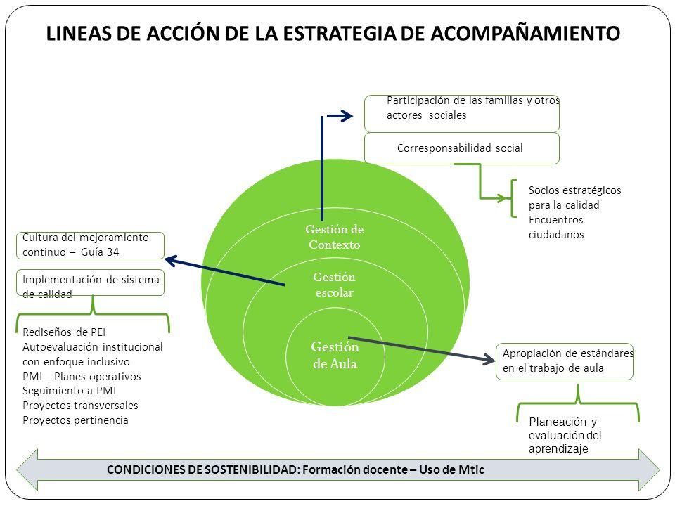 LINEAS DE ACCIÓN DE LA ESTRATEGIA DE ACOMPAÑAMIENTO