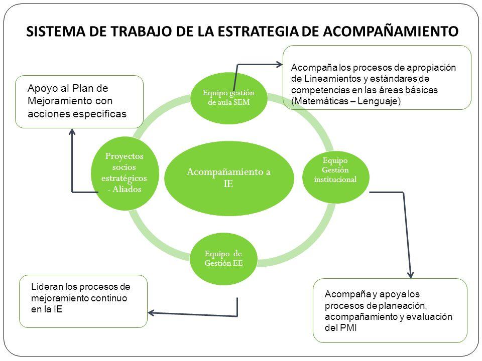 SISTEMA DE TRABAJO DE LA ESTRATEGIA DE ACOMPAÑAMIENTO