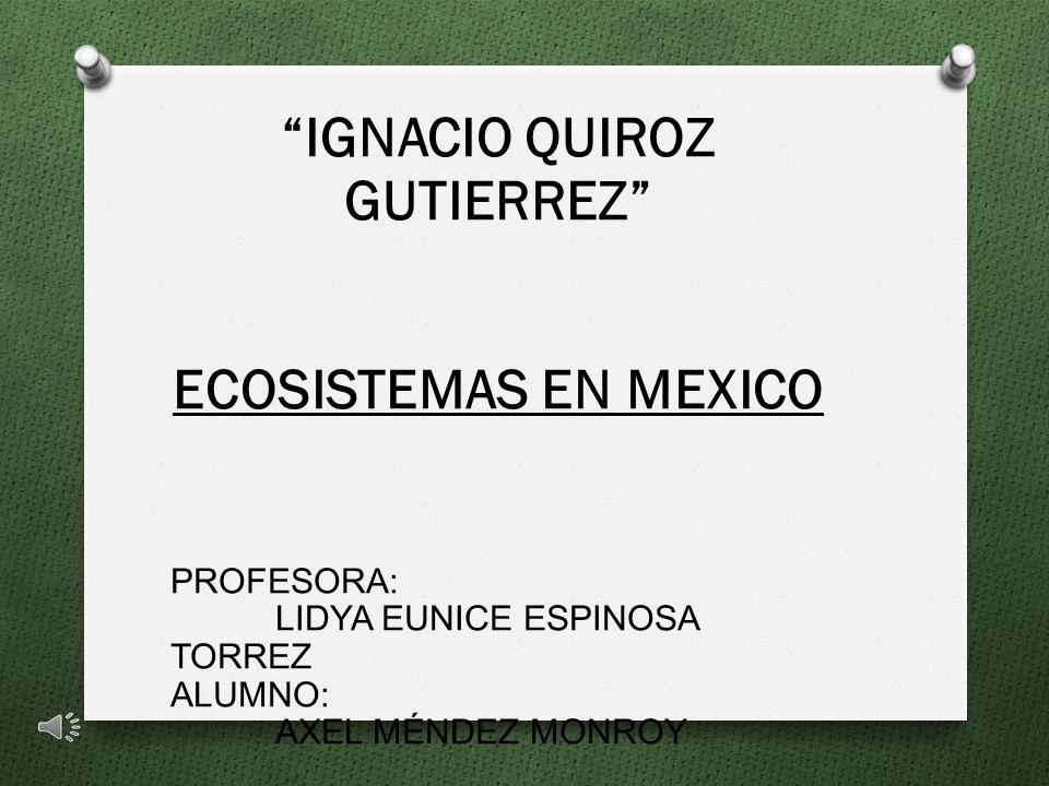 IGNACIO QUIROZ GUTIERREZ