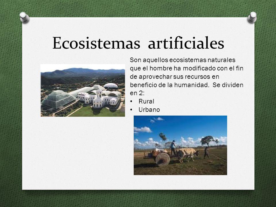 Ecosistemas artificiales