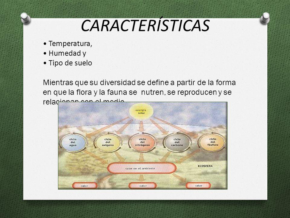 CARACTERÍSTICAS Temperatura, Humedad y Tipo de suelo